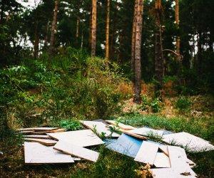 Müll in Ludwigsfelde