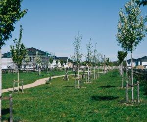Rousseau-Park