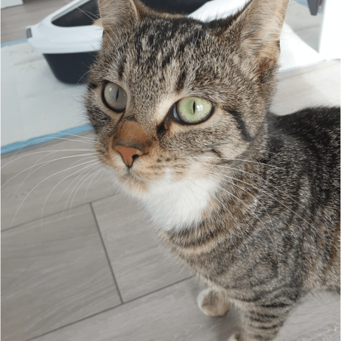 2021-03-19_Fundkater