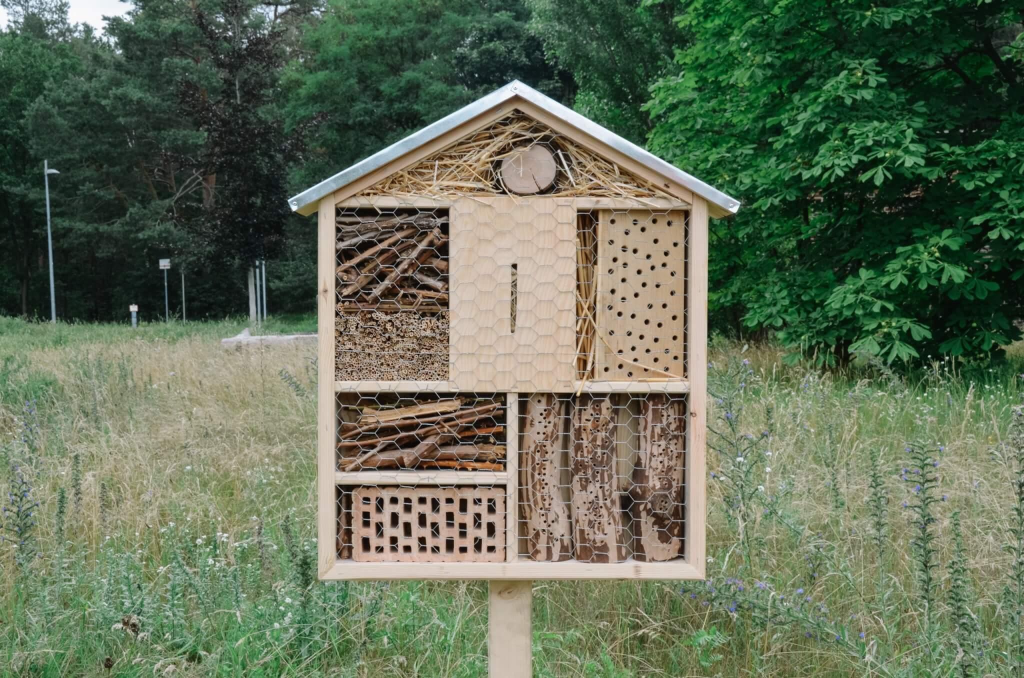 Insektenhotel-47